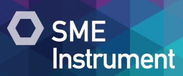 Would you like to know how SME Instrument works?