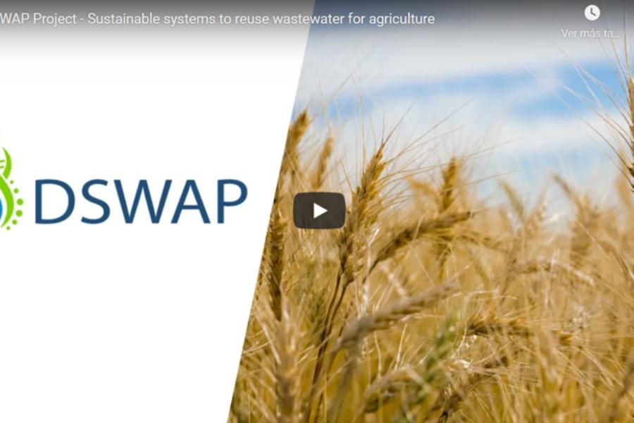 Promotional video DSWAP project