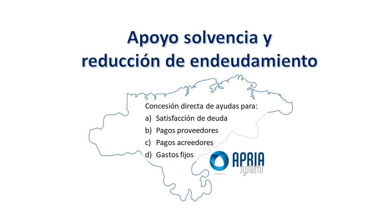 Apoyo solvencia y reducción del endeudamiento